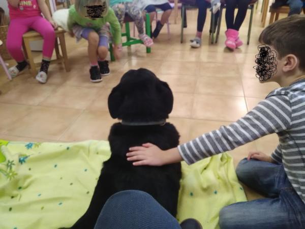 De charla entre los maravillosos niños