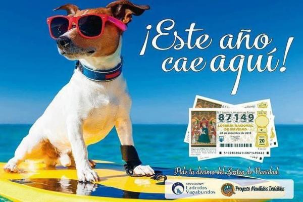 Décimos de Lotería Navidad, *Donativo: 23€ + gastos de envío.